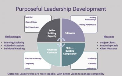 Leadership Development: Competencies or Capacity?