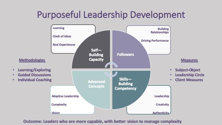 Leadership Development: Competencies or Capacity?